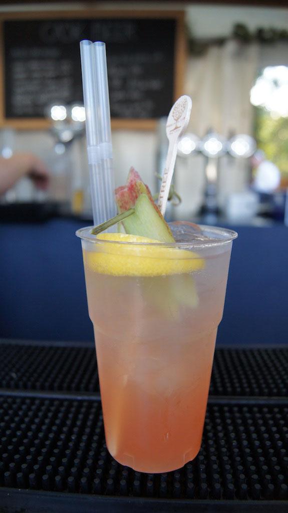 Rhubarb Gin & Tonic koktél